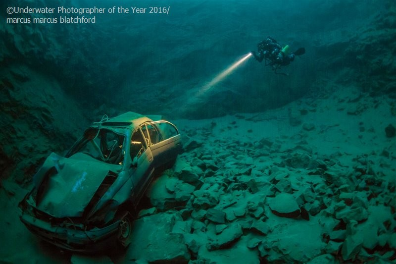 Underwater Photographer of the Year 2016_vinegret (2)