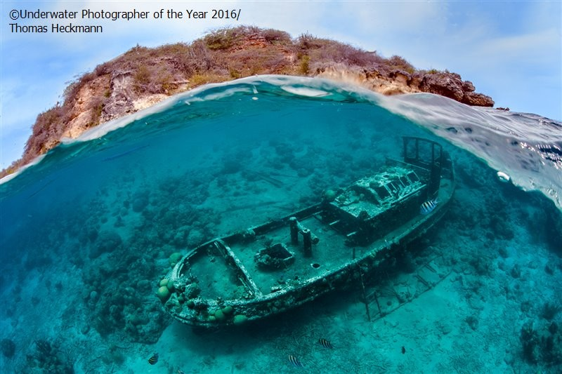 Underwater Photographer of the Year 2016_vinegret (4)