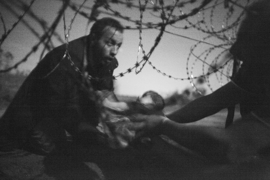 World Press Photo 2016_vinegret (1)