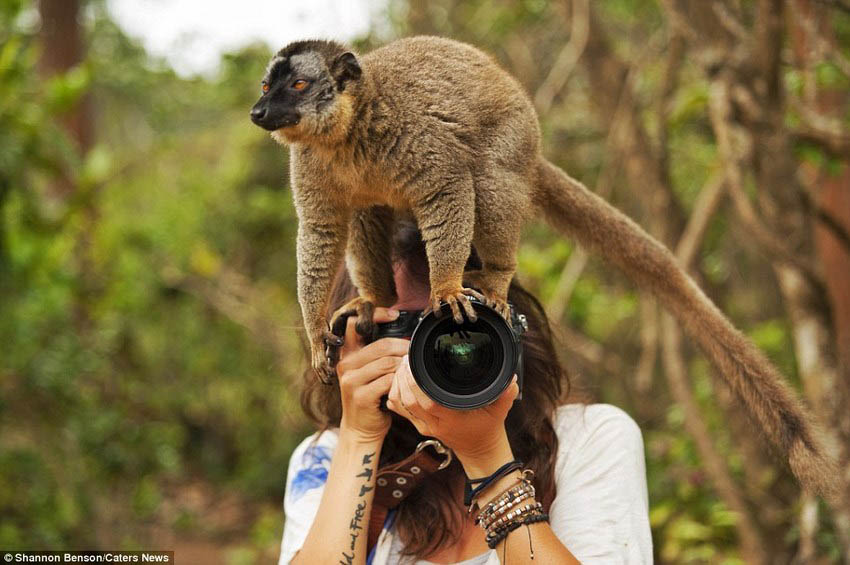 Brave-girl-the-photographer-easily-finds-common-language-with-wild-animals-vinegret (4)
