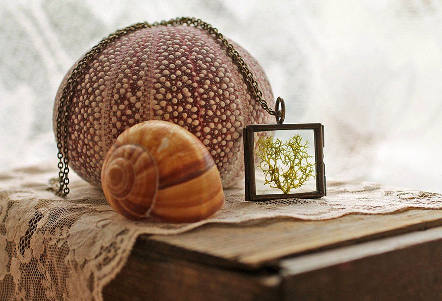 terrarium-jewelry-microcosm-ruby-robin-boutique-vinegret (2)