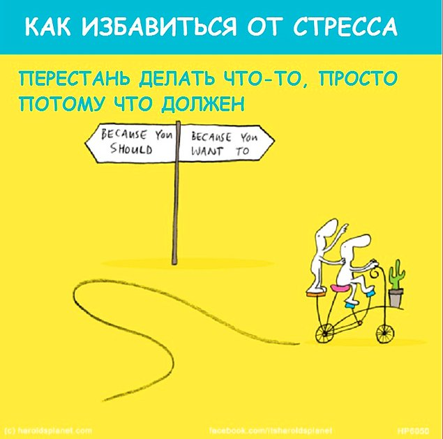 LastLemon_kak_spravitsya_so_stressom_vinegret (9)