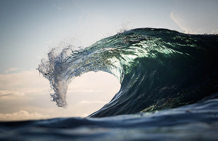 WarrenKeelan_SeaDragon_vinegret