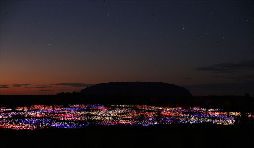 surreal-light-installations-field-of-light-bruce-munro-uluru-australia-vinegret (1)