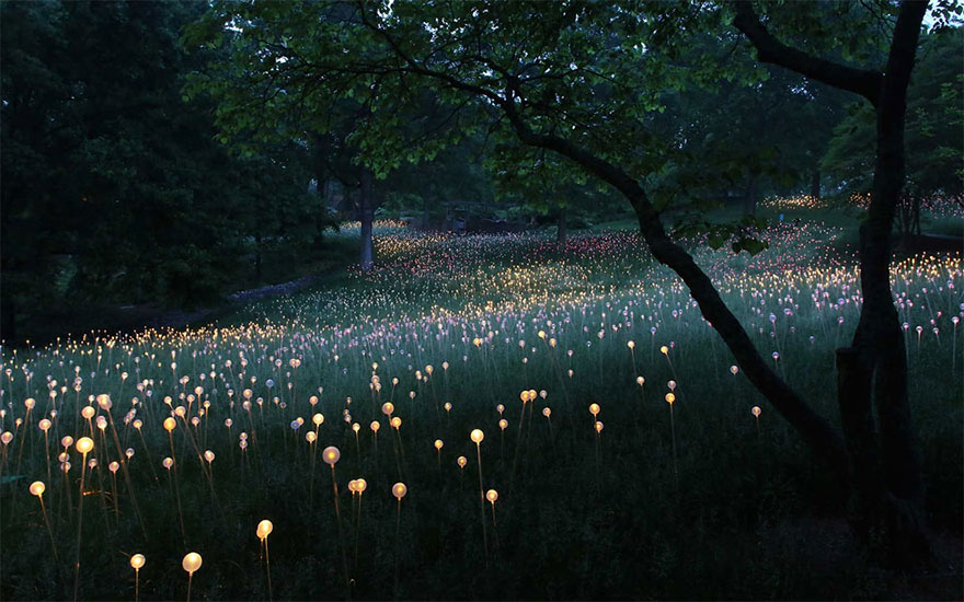 surreal-light-installations-field-of-light-bruce-munro-uluru-australia-vinegret (10)