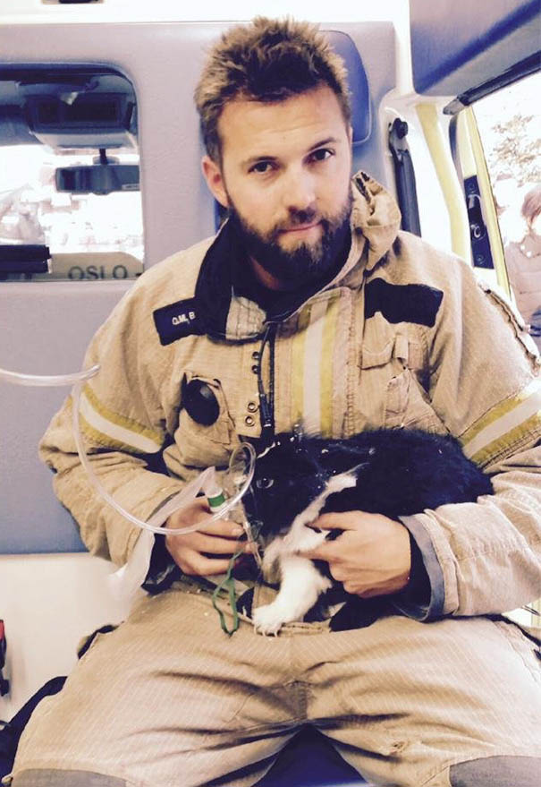 firefighters-rescuing-animals-saving-pets-vinegret (22)