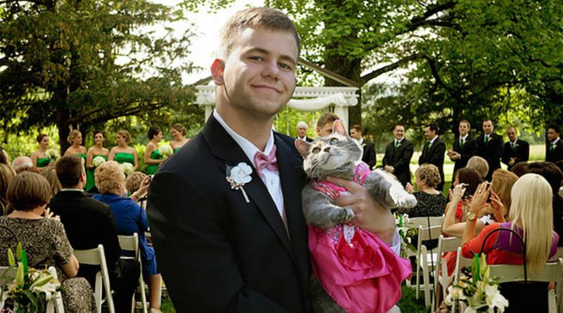 guy-takes-cat-prom-ruby-sam-steingard-vinegret (1)