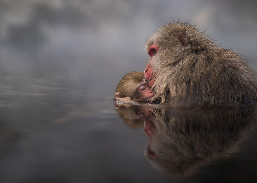 national-geographic-travel-photographer-of-the-year-contest-2016-vinegret (12)