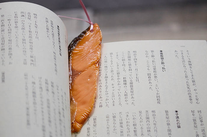 realistic-fake-food-bookmarks-tokyo-kitsch-japan-vinegret (7)
