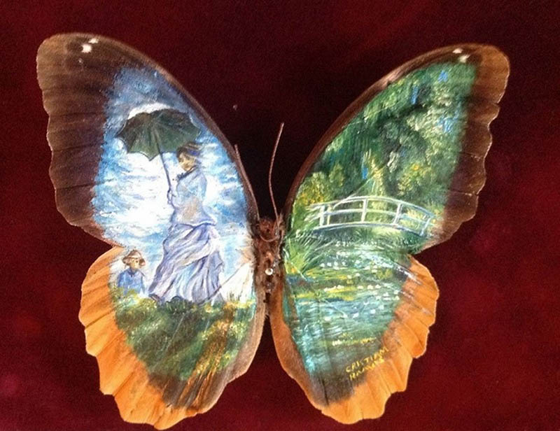 Amazing-paintings-on-the-wings-of-butterflies-vinegret (13)