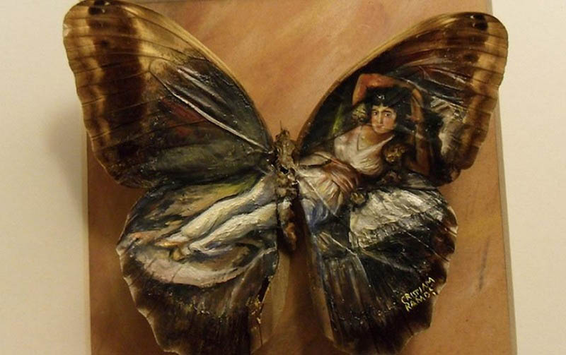 Amazing-paintings-on-the-wings-of-butterflies-vinegret (5)