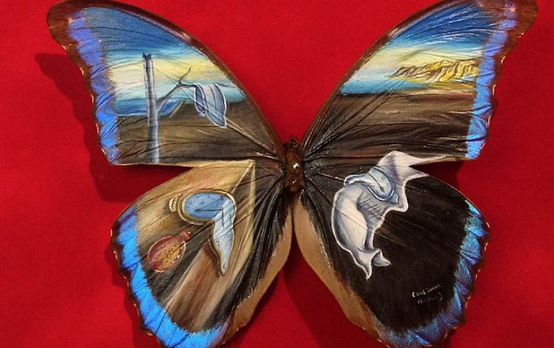 Amazing-paintings-on-the-wings-of-butterflies-vinegret (9)
