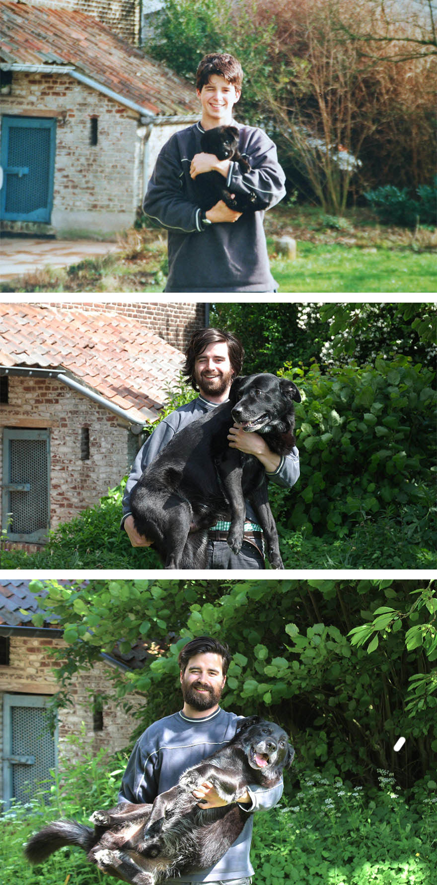 before-after-dog-recreate-photo-gordon-delacroix-birdy-vinegret