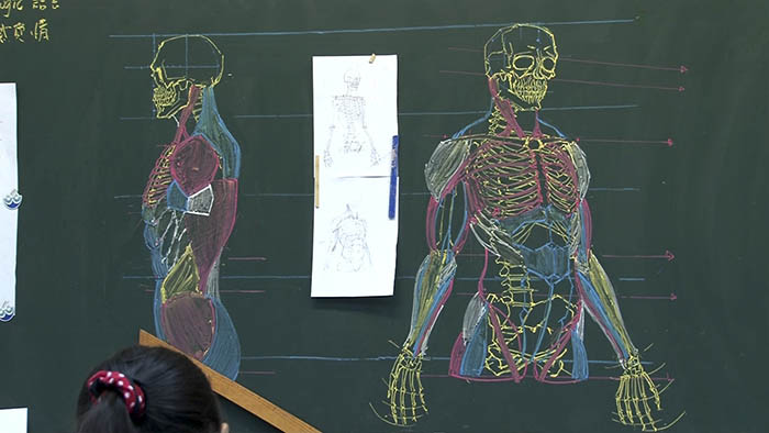 chinese-teacher-anatomical-chalkboard-drawings-vinegret (3)