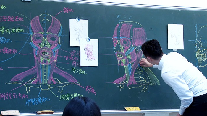chinese-teacher-anatomical-chalkboard-drawings-vinegret (7)