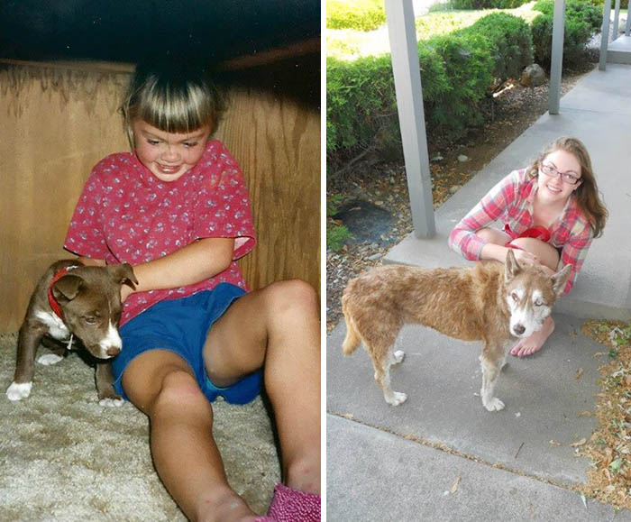 before-after-pets-growing-old-first-last-photos-vinegret (11)
