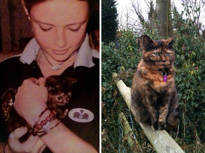 before-after-pets-growing-old-first-last-photos-vinegret (15)