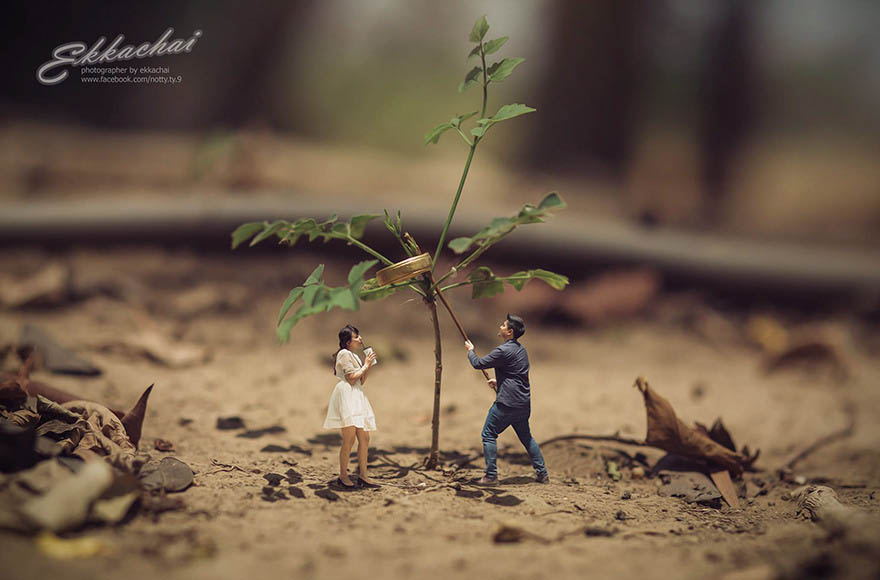 miniature-wedding-photography-ekkachai-saelow-vinegret (19)