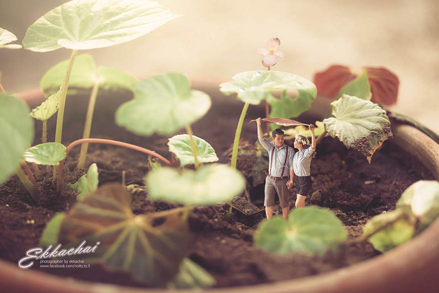miniature-wedding-photography-ekkachai-saelow-vinegret (4)
