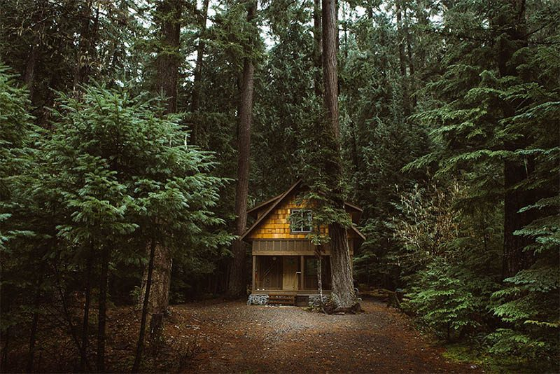 cozy-cabins-in-the-woods-vinegret (18)
