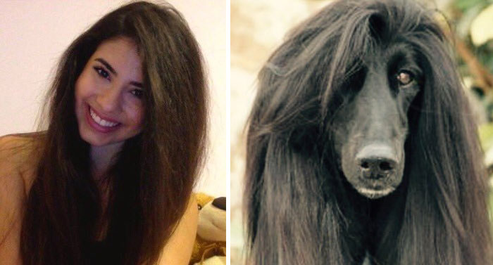 humans-look-like-dogs-doppelganger-you-are-dog-now-twitter-vinegret (11)