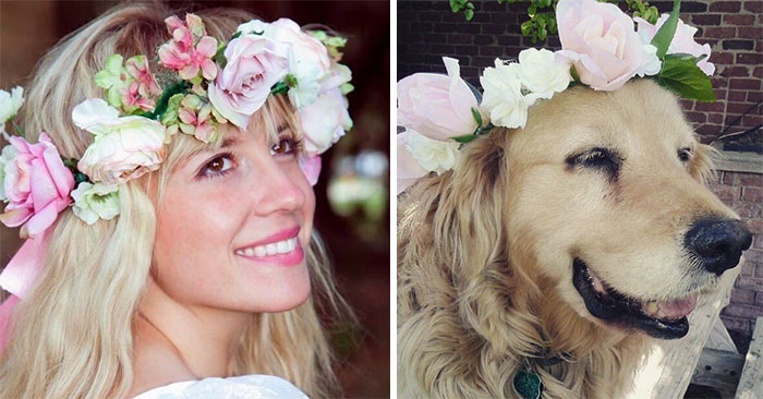 humans-look-like-dogs-doppelganger-you-are-dog-now-twitter-vinegret (2)