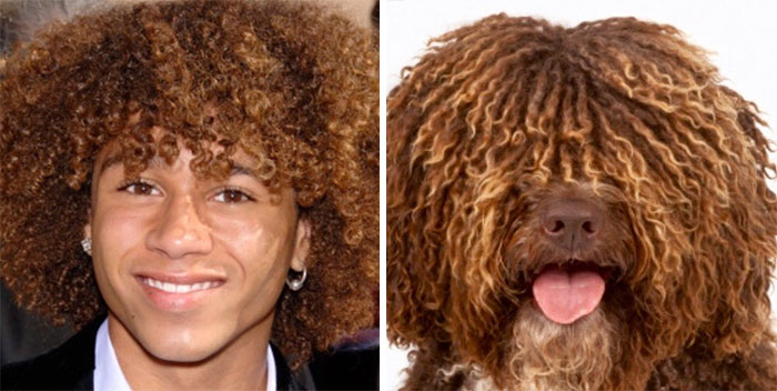 humans-look-like-dogs-doppelganger-you-are-dog-now-twitter-vinegret (4)