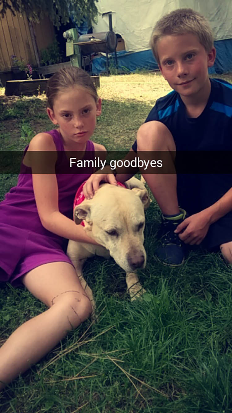 last-day-dying-dog-snapchat-hannah-vinegret (8)