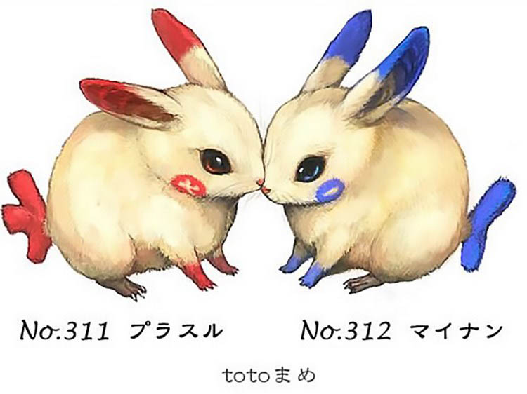 real-life-pokemon-illustrations-totomame-vinegret (2)