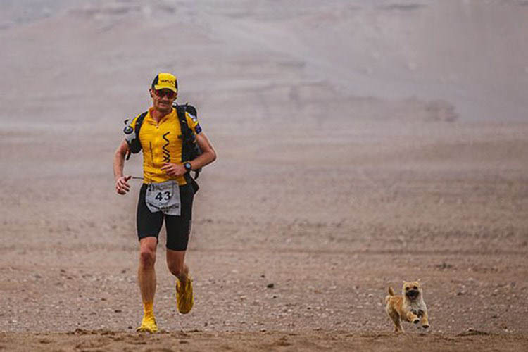 stray-dog-joins-race-gobi-dion-leonard-china-vinegret (8)