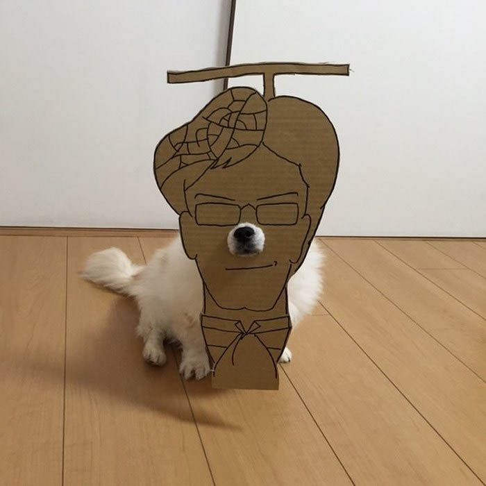 dog-costume-cardboard-cutouts-myouonnin-vinegret-12