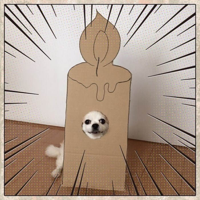 dog-costume-cardboard-cutouts-myouonnin-vinegret-17