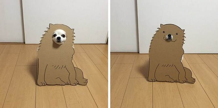 dog-costume-cardboard-cutouts-myouonnin-vinegret-2