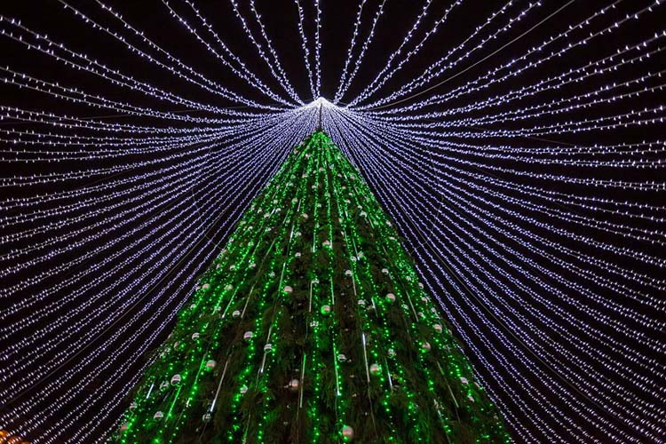 christmas-tree-illuminated-by-50000-lightbulbs-opens-festive-season-in-vilnius-vinegret-2