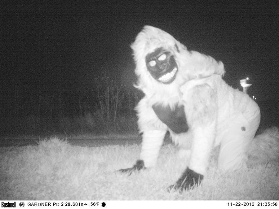 police-camera-find-mountain-lion-kansas-vinegret-1