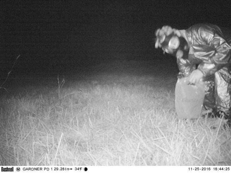 police-camera-find-mountain-lion-kansas-vinegret-5