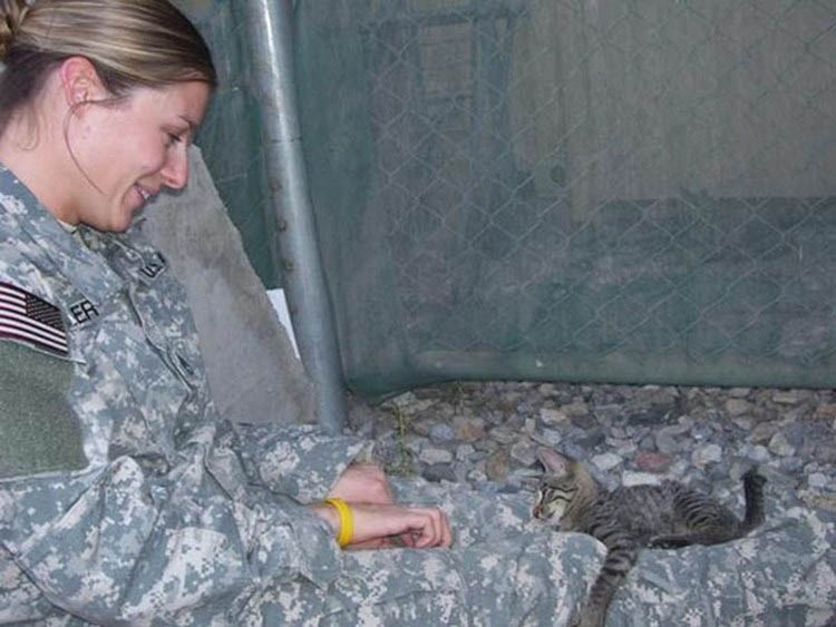 soldier-refuses-leaving-special-needs-kitten-afghanistan-vinegret-5